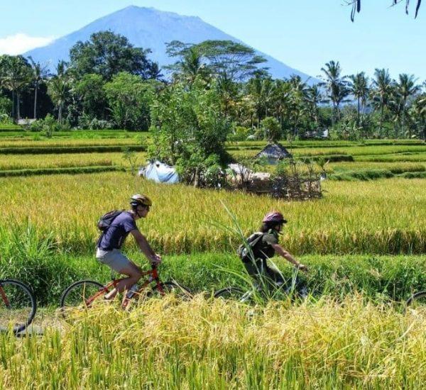 Bali-Eco-Cycling-Bl