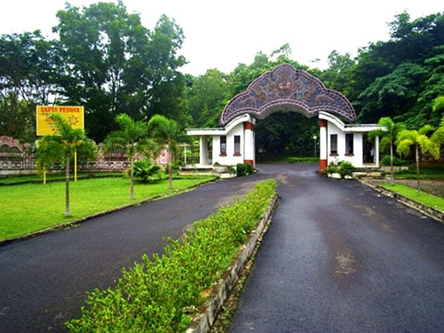 Bukit siguntang Sumatra
