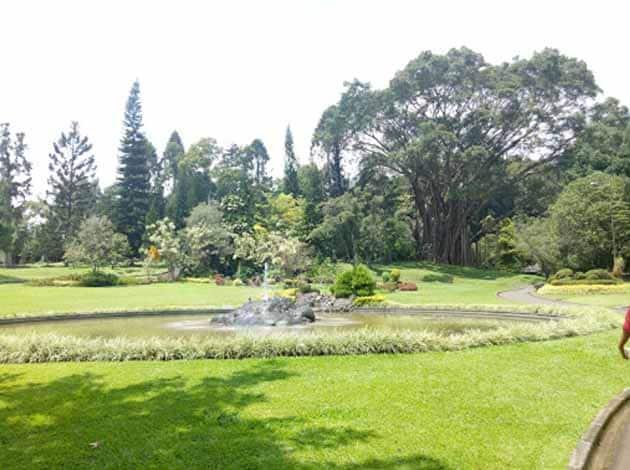 Istana Cipanas Rumput