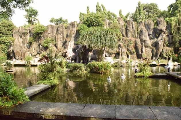 Kebun Binatang Ragunan KOlam