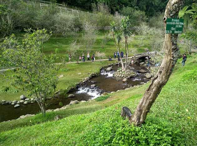 Kebun Raya Cibodas Taman