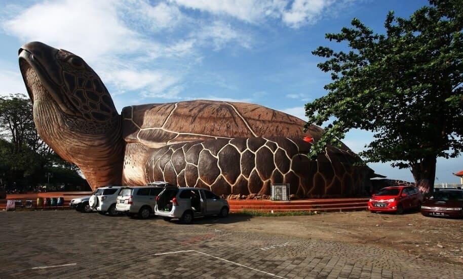 Kura-Kura-Ocean-Park-Mobil