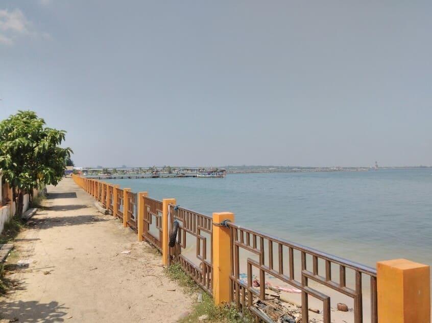 Kura-Kura-Ocean-Park-Pantai