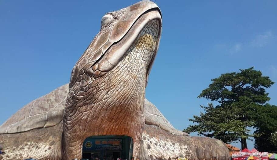 Kura-Kura-Ocean-Park