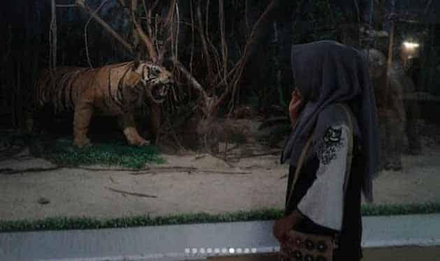 Museum Lampung Harimau