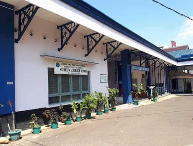 Museum Zoologi Pintu Masuk