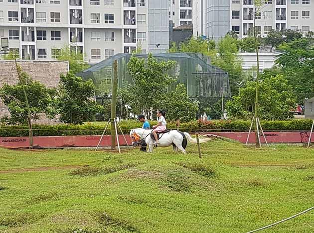 Scientia Square Park Berkuda