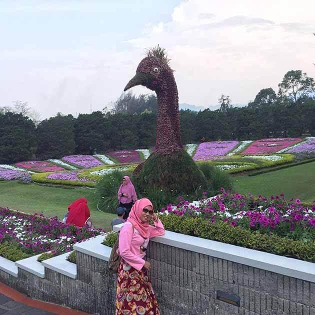 Taman Bunga Nusantara Cantik