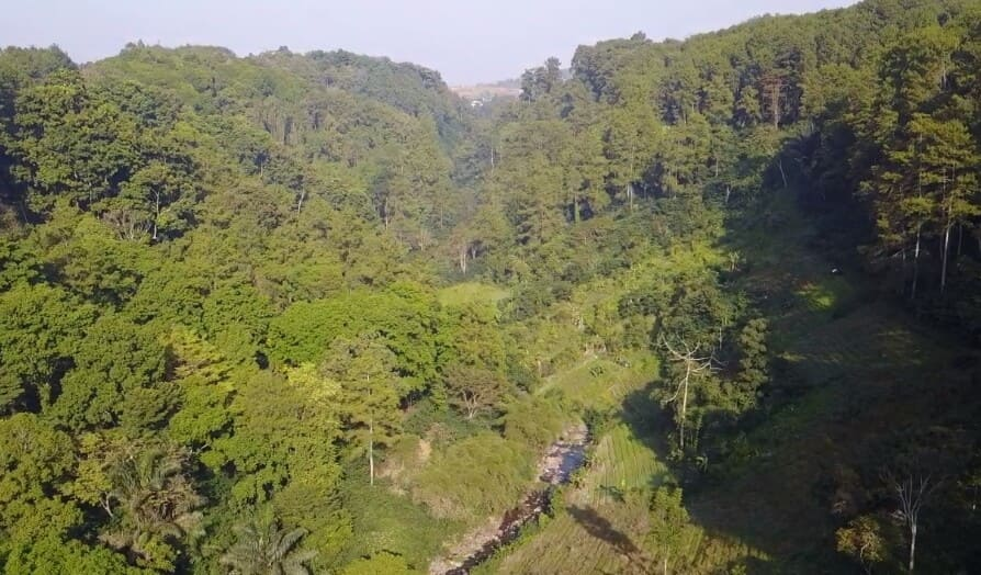 Taman-Hutan-Raya-Juanda-Mantab