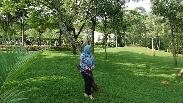 Taman Tabebuya Asri