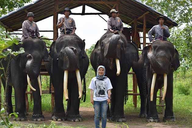 Way Kambas 3 gajah