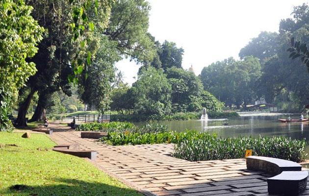 Sejarah Misteri Kebun Raya Bogor, Harga Tiket Masuk + Peta Lokasi 5