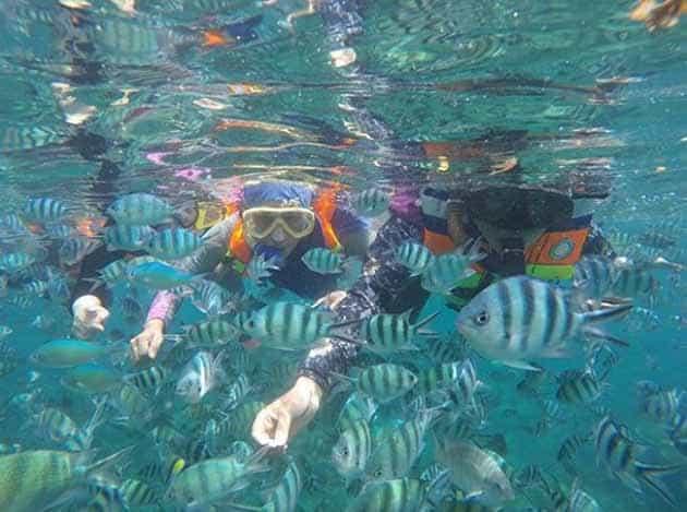 Liburan Seru ke Mercusuar Pulau lengkuas Belitong, Harga Tiket + Penginapan 5