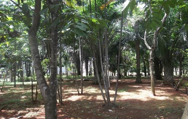 Liburan Seru di Ocean Park BSD Tangerang, Alamat Lokasi + Wahana Terlengkap 2