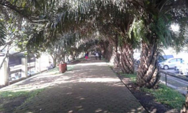 Tempat Asik Tegalega Bandung Setelah Di Renovasi dan Alamat Lokasi 10