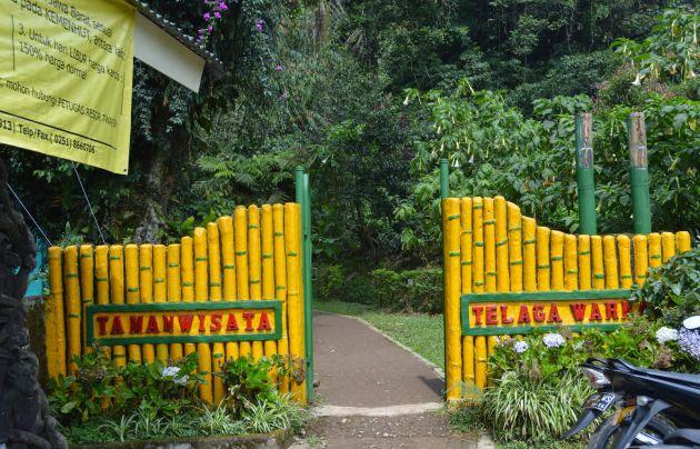 Harga Tiket Masuk dan Jalan Menuju Taman Wisata Telaga Warna Puncak Bogor 3