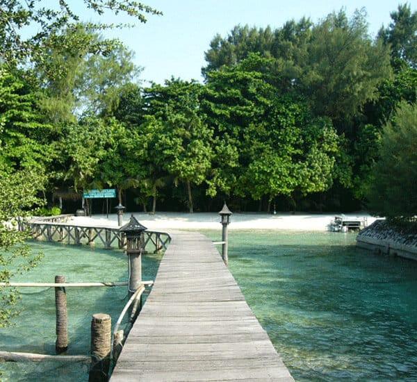 wp pulau kotok