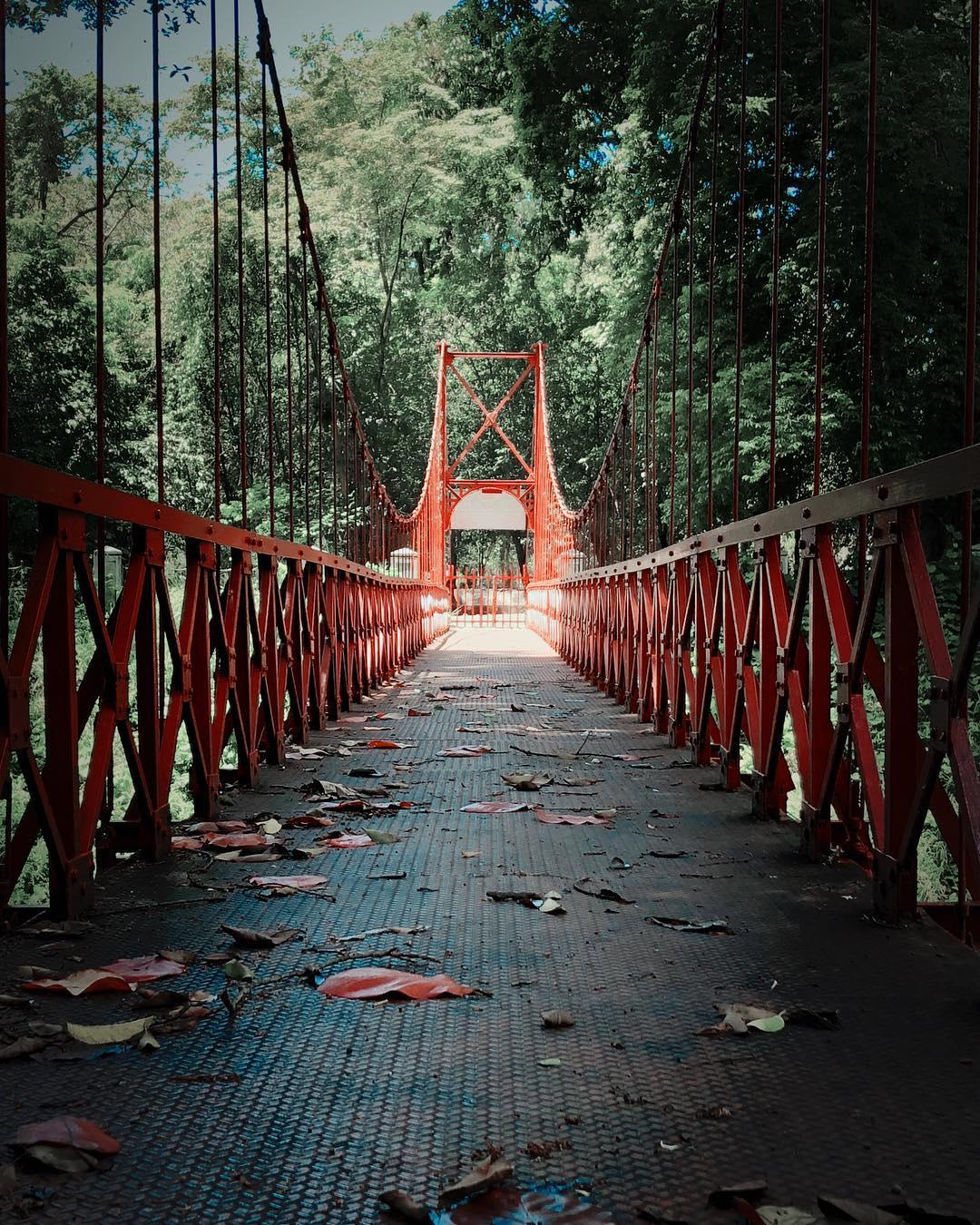 9 Tempat Wisata Keluarga dan Anak di Bogor 16