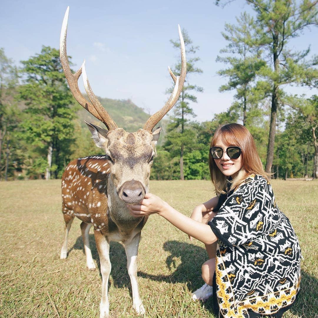 9 Tempat Wisata Keluarga dan Anak di Bogor 1