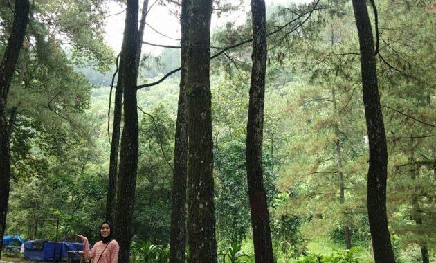 Curug Nangka Sebuah Keindahan Di Kaki Gunung Salak Bogor 6