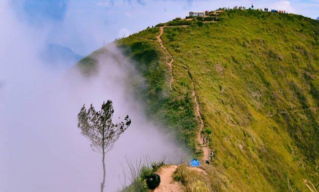 Wisata Magelang Gunung Andong