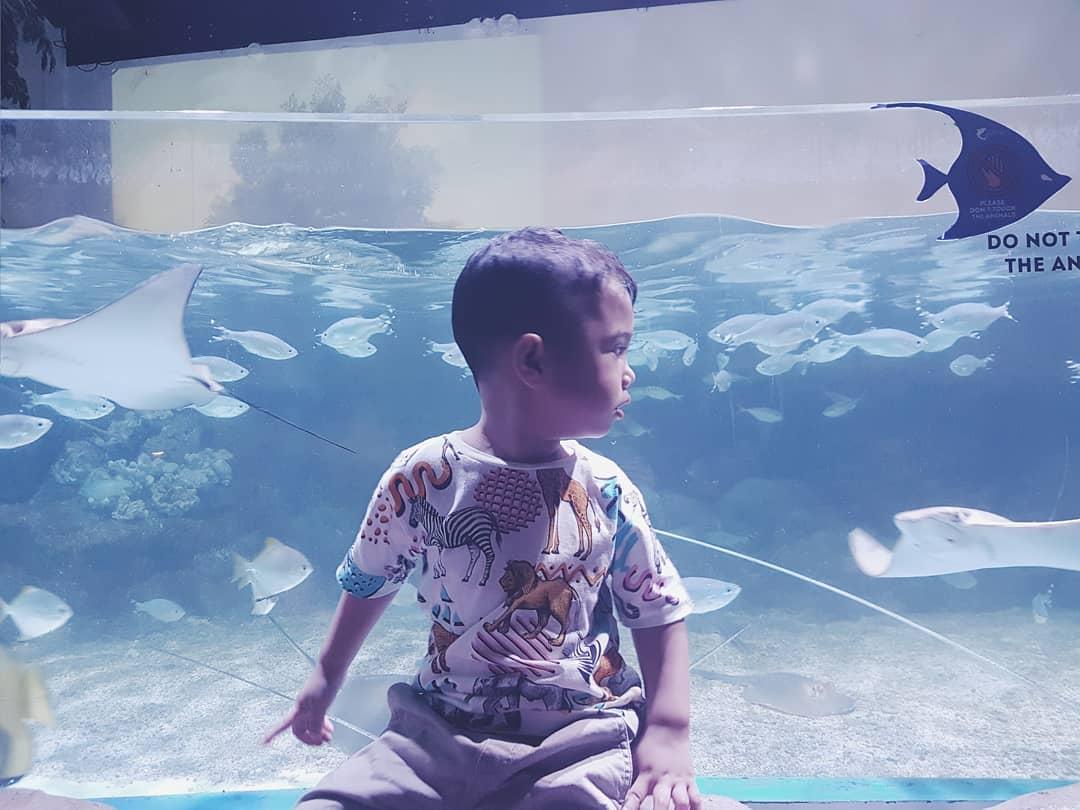 jakarta aquarium anak kecil