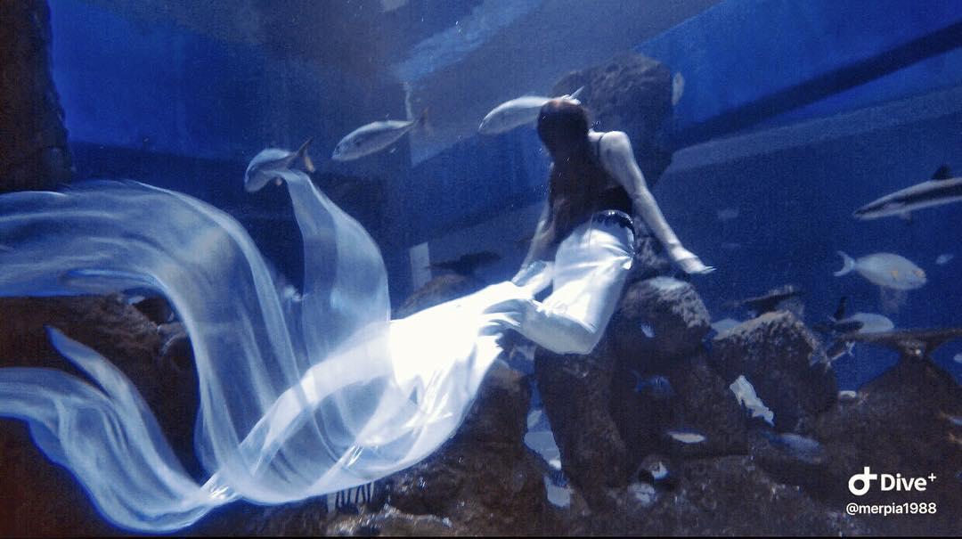 jakarta aquarium putri duyung