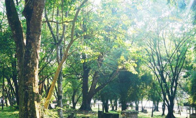 Melihat Situs Warisan Kerajaan Sriwijaya Di Bukit Siguntang 7