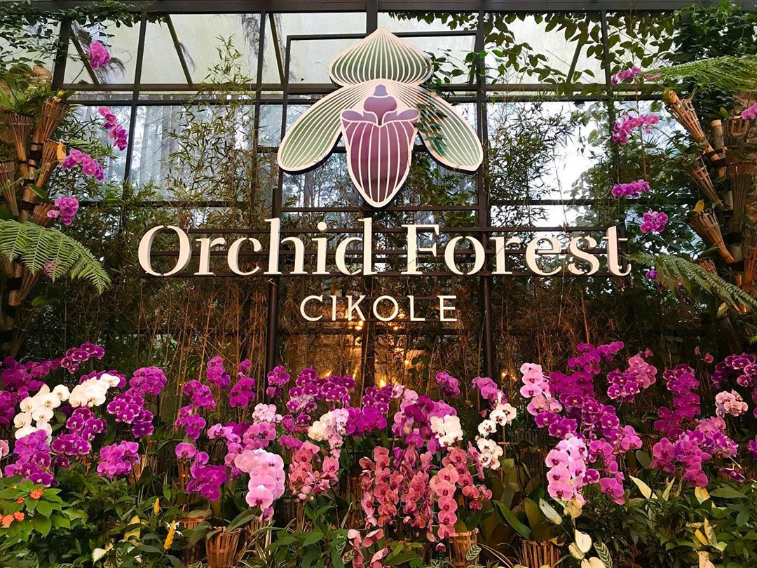 gerbang orchid forest cikole