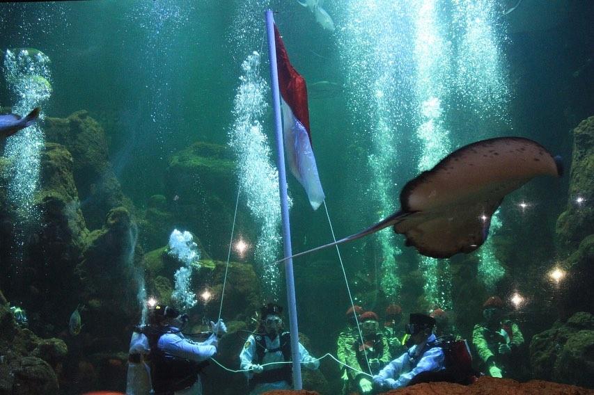 pengibaran-bendera-di-seaworld-ancol