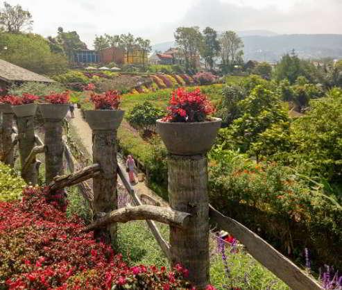 Tiket Masuk Rainbow Garden 2020, Fasilitas & Lokasi Wisata