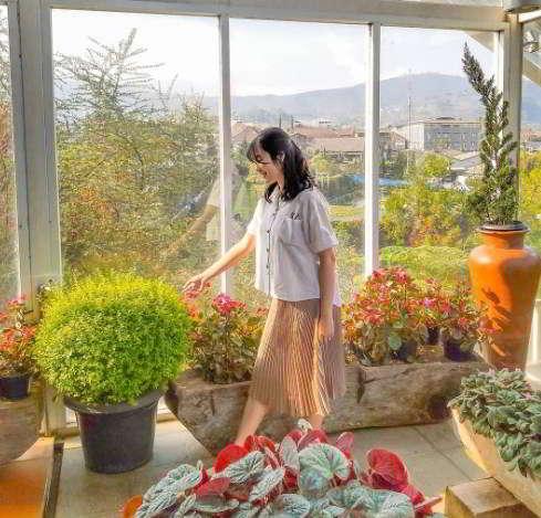 rainbow-garden-green-house