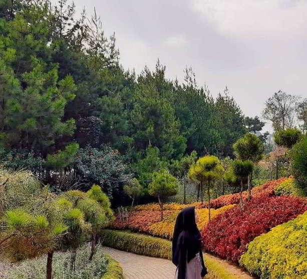 rainbow-garden-taman-bunga