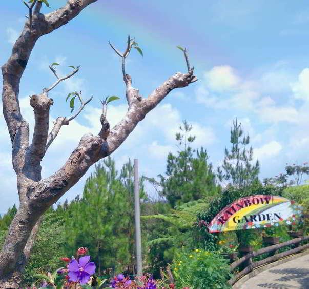 tiket-masuk-rainbow-garden