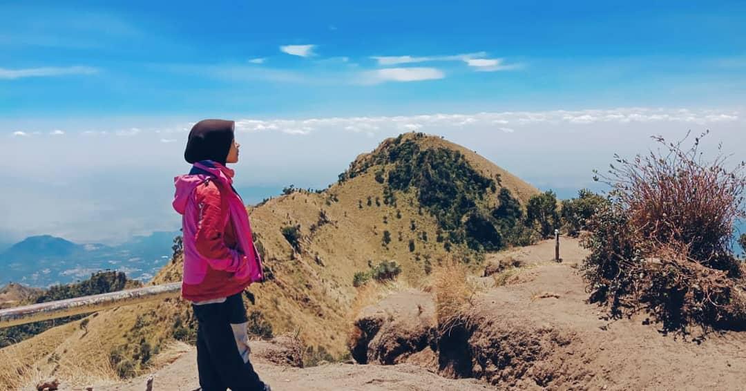 Mendaki Salah Satu Gunung Kembar Yogyakarta Gunung Merbabu 5