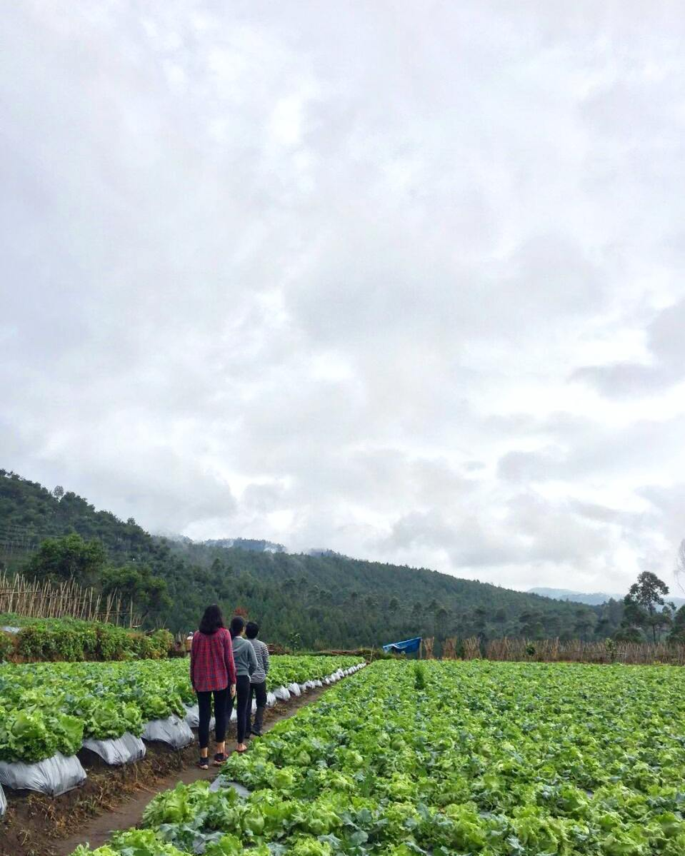 Desa Pasir Angling
