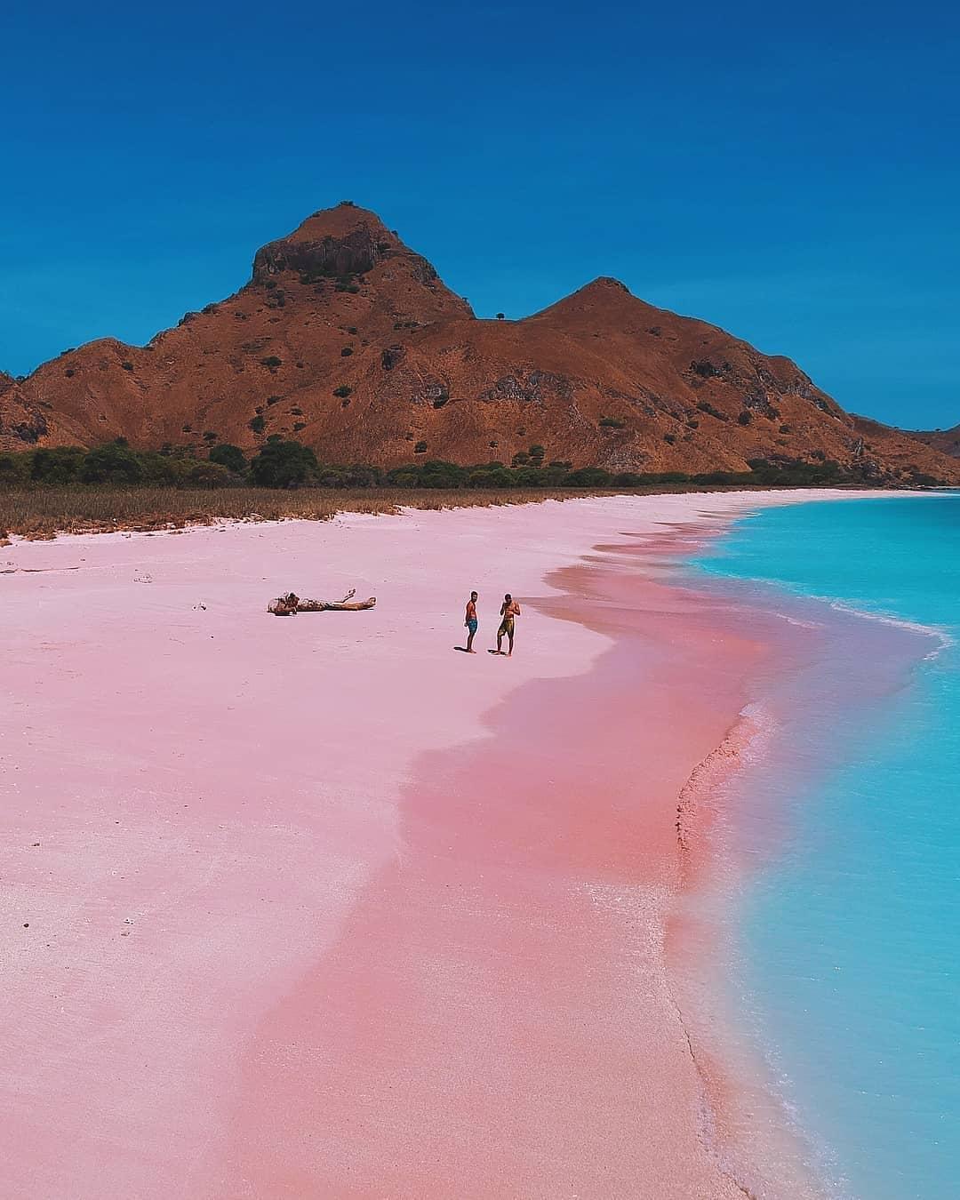 Nice View Pantai Pink