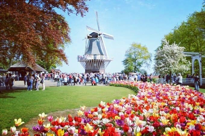 Taman Bunga Kampoeng Tulip