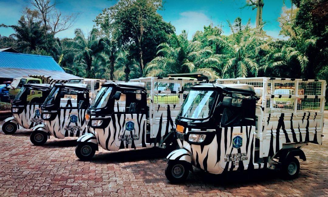 Wisata Rekreasi Edukasi Murah Meriah di Kebun Binatang Ragunan 1