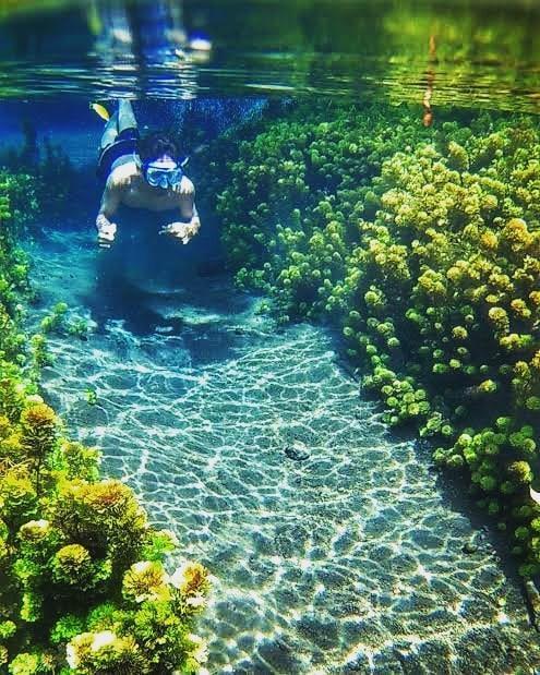 Snorkling di Mata Air Sumber Sirah