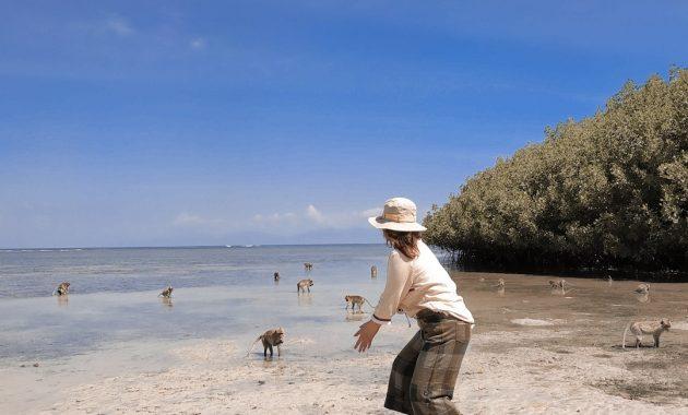 Menjelajah Little Africa in Java Di Taman Nasional Baluran 8