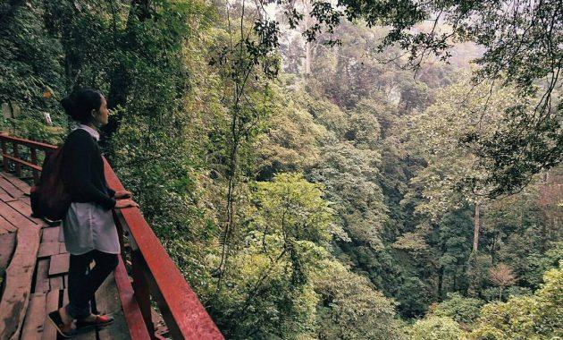 Curug Benowo, Wisata Alam Semarang Favorit Sang Pangeran 6