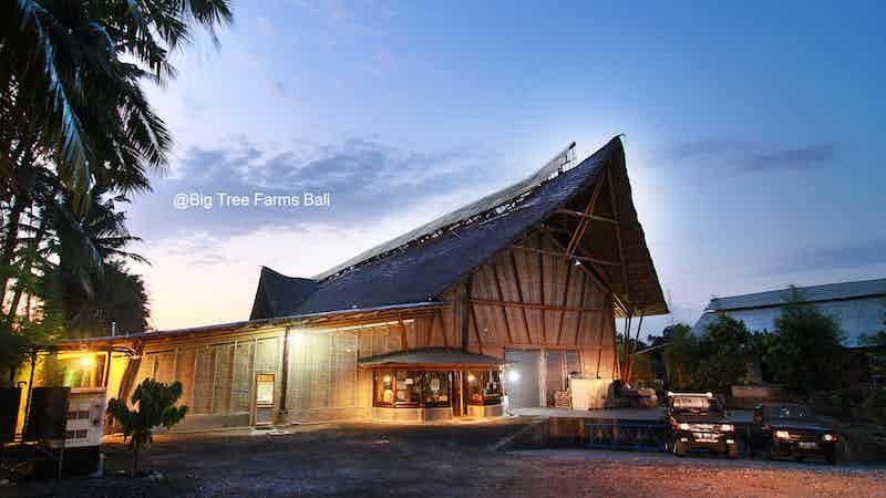 Big Tree Farms Bamboo Chocolate
