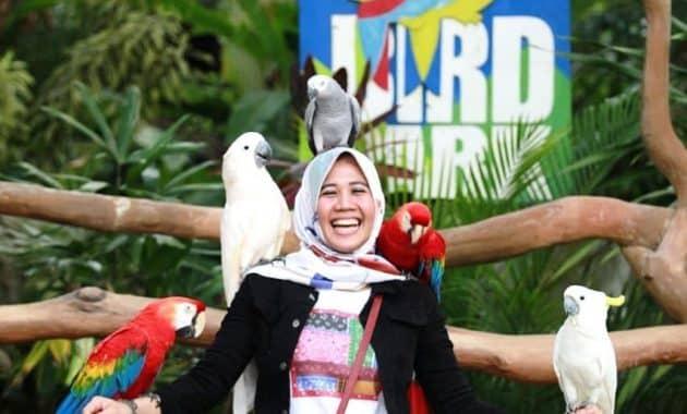 Bermain Dengan Satwa Dan Alam Di Lembah Hijau Lampung 2