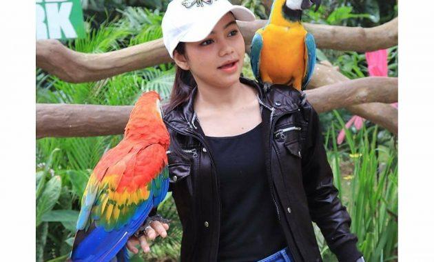 Bermain Dengan Satwa Dan Alam Di Lembah Hijau Lampung 3