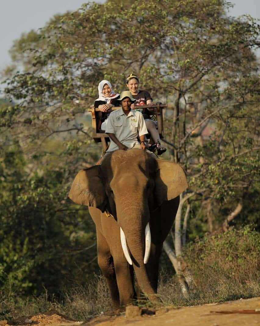Bermain Dengan Satwa Dan Alam Di Lembah Hijau Lampung 1