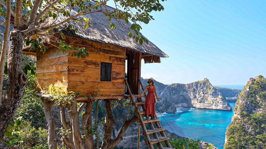 Rumah Pohon Bali