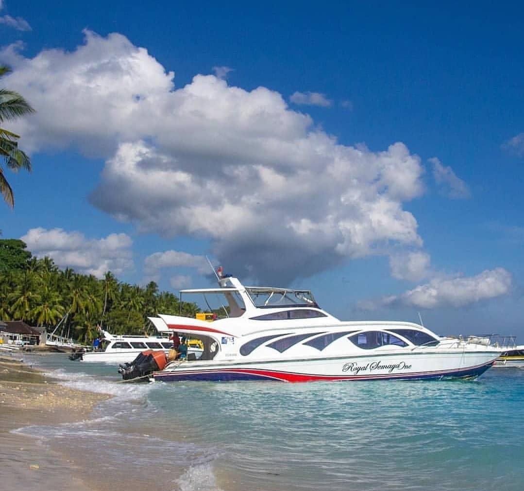 Berlayar Menuju Pulau Dewata Dengan Kapal Laut Surabaya Bali 1