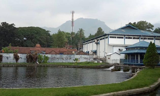 Berenang Di Tengah Alam Seru Muncul Waterpark Semarang 4