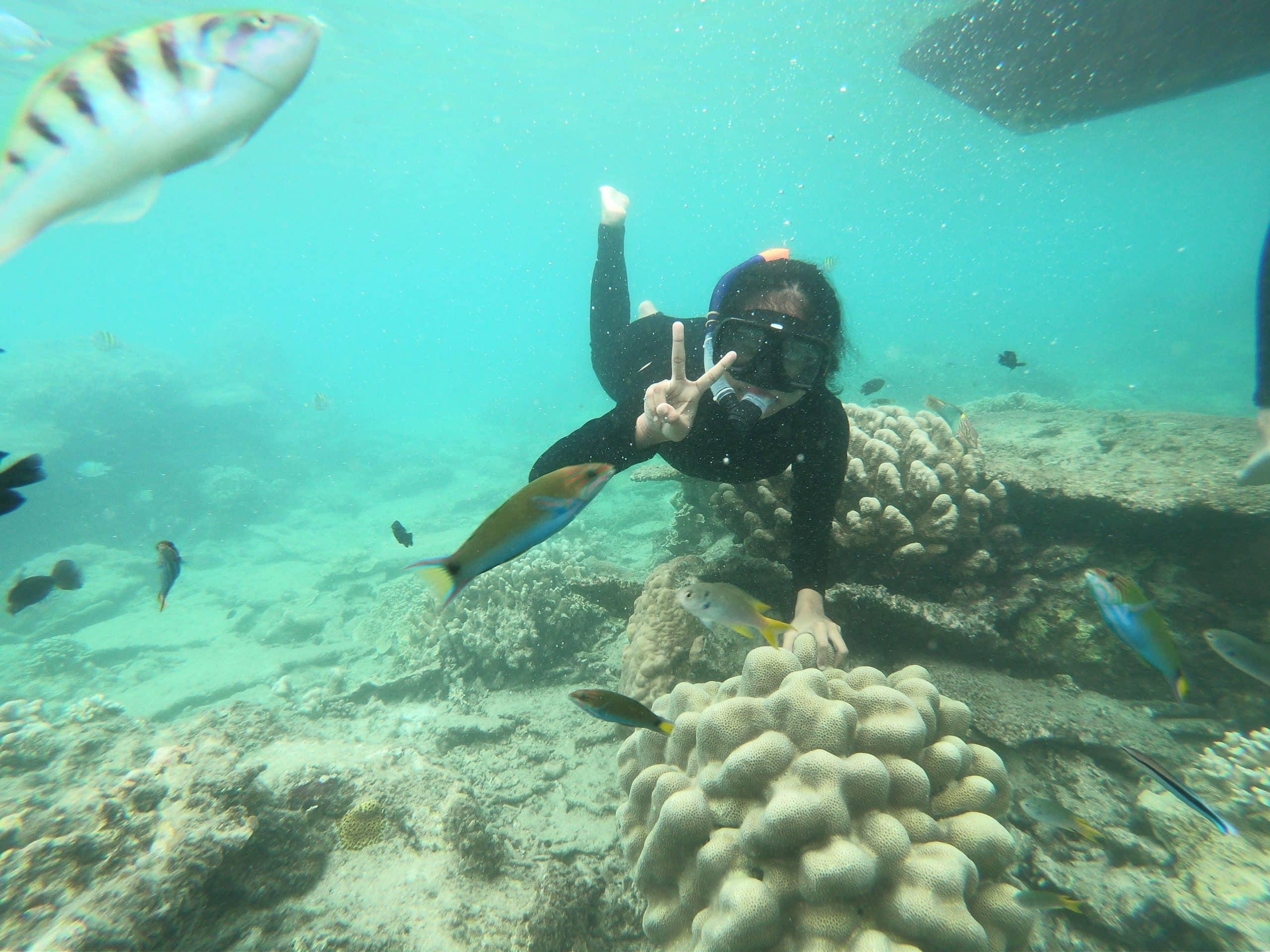 Snorkling Pulau Harapan